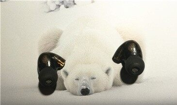 【ZNDS众测】熊掌和鱼可以兼得  执着heibat DIY发烧级耳机体验